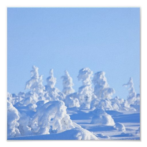 Finnish Lapland in the winter Posters