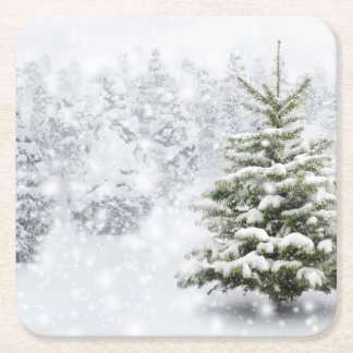 Fir Tree In Thick Snow Square Paper Coaster