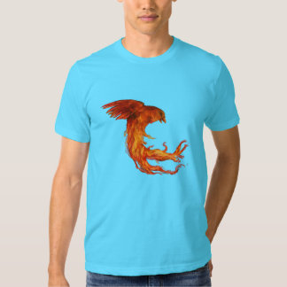 Fire and Water T-shirts
