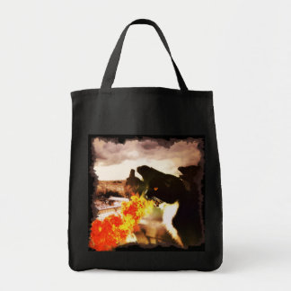 Fire Breathing Dragon Cat bag