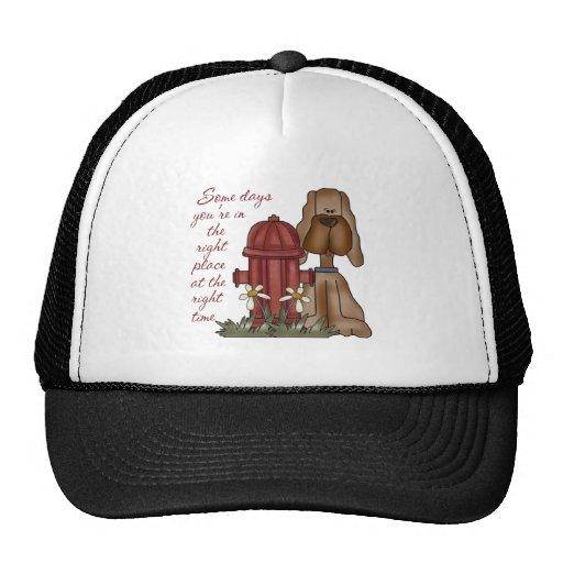 Fire Hydrant Dog Baseball Cap Mesh Hat