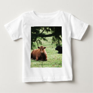 Fire-N-Ice Tee Shirts