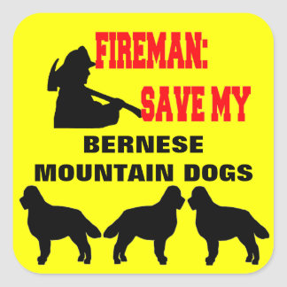 Fireman Save My Three Bernese Mountain Dogs Square Sticker