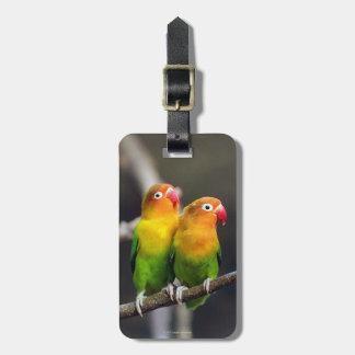 Fischer's Lovebird Luggage Tag