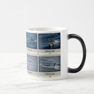 fish10, fish morphing mug