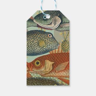 Fish and Seaweed Gift Tags