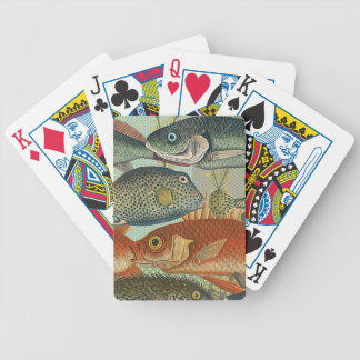 Fish and Seaweed Poker Deck