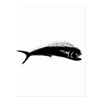 Fish Mahimahi Black The MUSEUM Zazzle Gifts Postcards