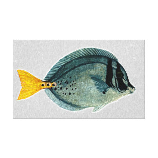 Fish  - Wrapped Canvas Art