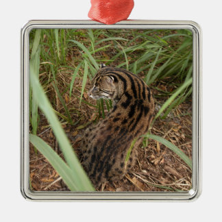 Fishing Cat Christmas Ornament