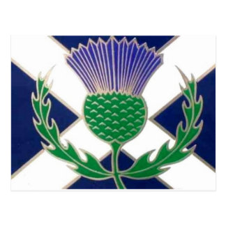 Flag of Scotland and Thistle Postcard