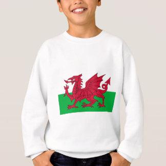 Flag of Wales - The Red Dragon - Baner Cymru Sweatshirt