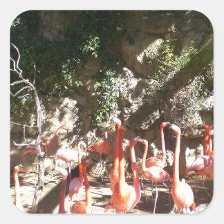 Flamingo Clan Square Sticker