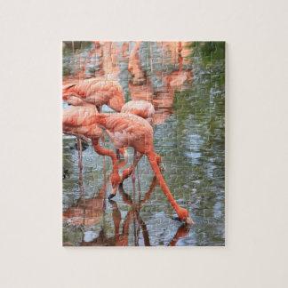 flamingo jigsaw jigsaw puzzle