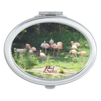 Flamingos Compact Mirror