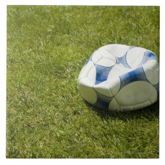 Flat soccer ball in grass, Germany Tile