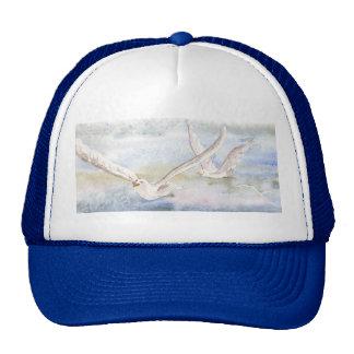 'Flight of the Gulls' Hat