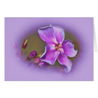 Floral in Pink and Lilac Card