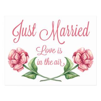 Floral Just Married Watercolor Pink Rose Wedding Postcard