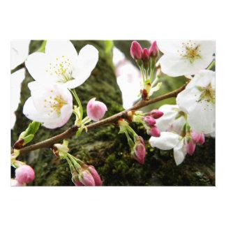 Floral Ladies Personalized Announcement