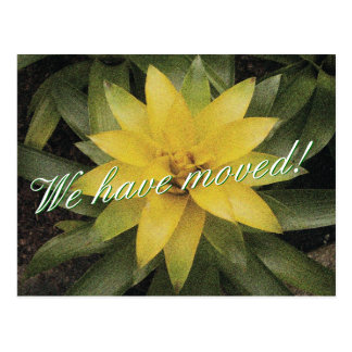 Floral moving postcards with yellow flower