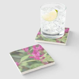 Floral Pink Magenta Flower Celosia Garden Photo Stone Coaster