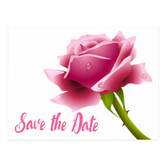 Floral Save The Date Pink Rose Flower Engagement Postcard