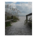 Florida Beach Path Posters