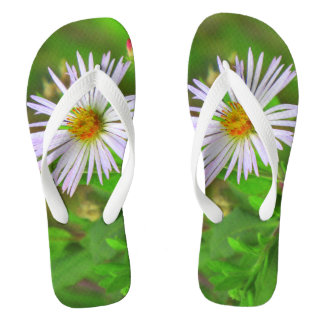 Florida Beauty (5064) Flip Flops