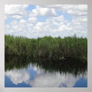 Florida Everglades print