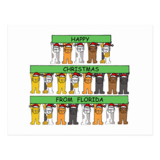 Florida Happy Christmas Cats Postcard