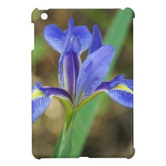 Florida Iris iPad Mini Cases