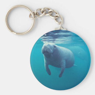 Florida Manatee Key Ring