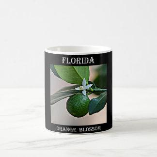 Florida Orange Blossom and small Orange Basic White Mug
