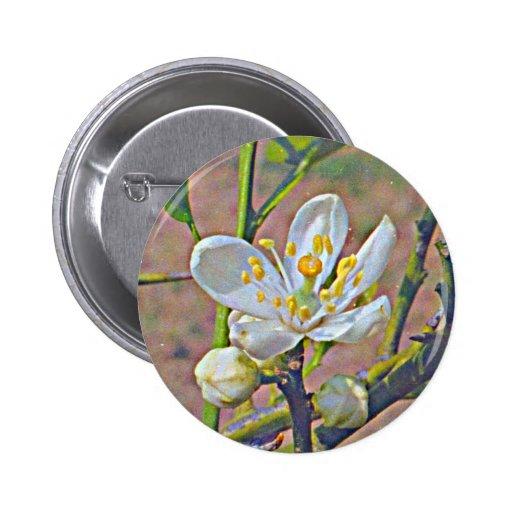Florida Orange Blossom Pins