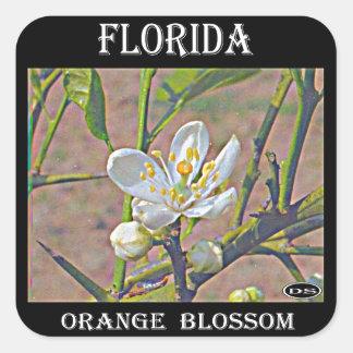 Florida Orange Blossom Square Sticker