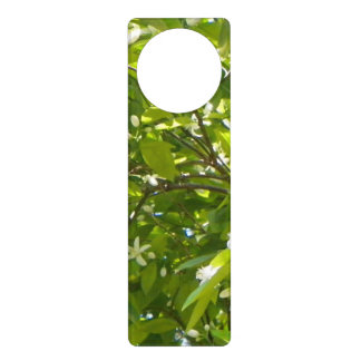 FLORIDA ORANGE BLOSSOMS Door Hanger