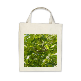 FLORIDA ORANGE BLOSSOMS Greeting Card Canvas Bags