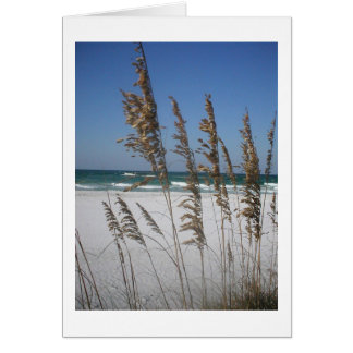 Florida Sea Oats Missing You Card