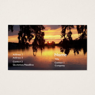 Florida Sunset Business Card Profile Card Photo