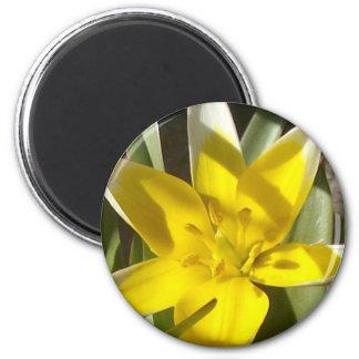 flower 6 cm round magnet
