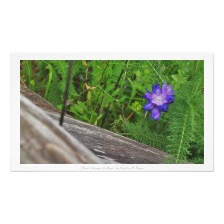 """Flower Amongst the Wood,"" Floral Decor Photo Print"