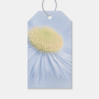 Flower Aster Gift Tags