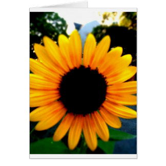 Flower (Blank Fill it Yourself) Greeting Card