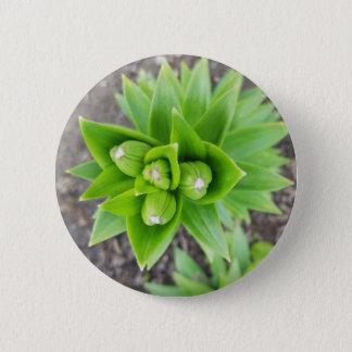 Flower bud button