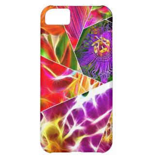 Flower Burst iPhone 5C Case