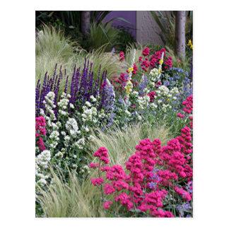 Flower display in garden postcard