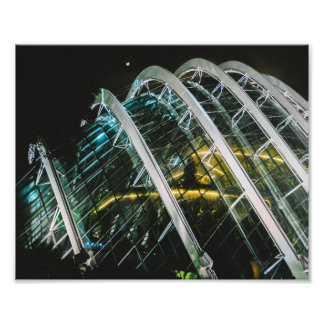 Flower Dome Architecture Photographic Print