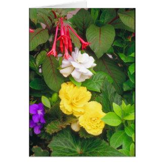 Flower Garden Beauties Card