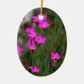 Flower of a maiden pink ceramic oval decoration